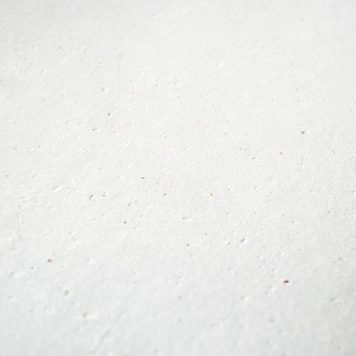 うす厚ホワイト