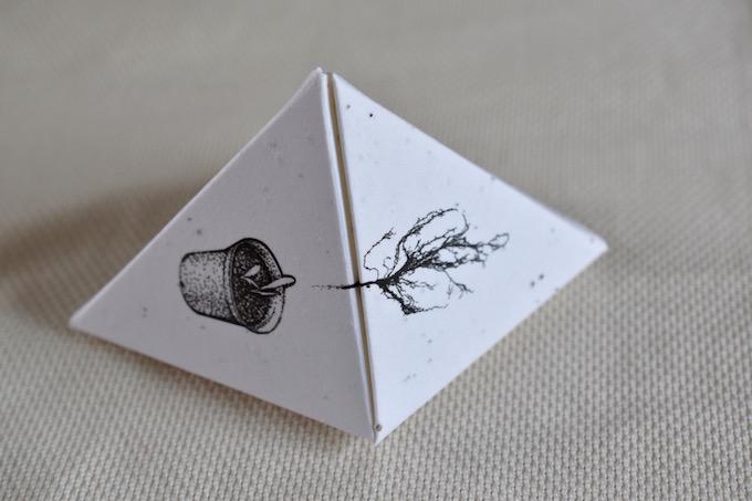 En-spire Seed Box