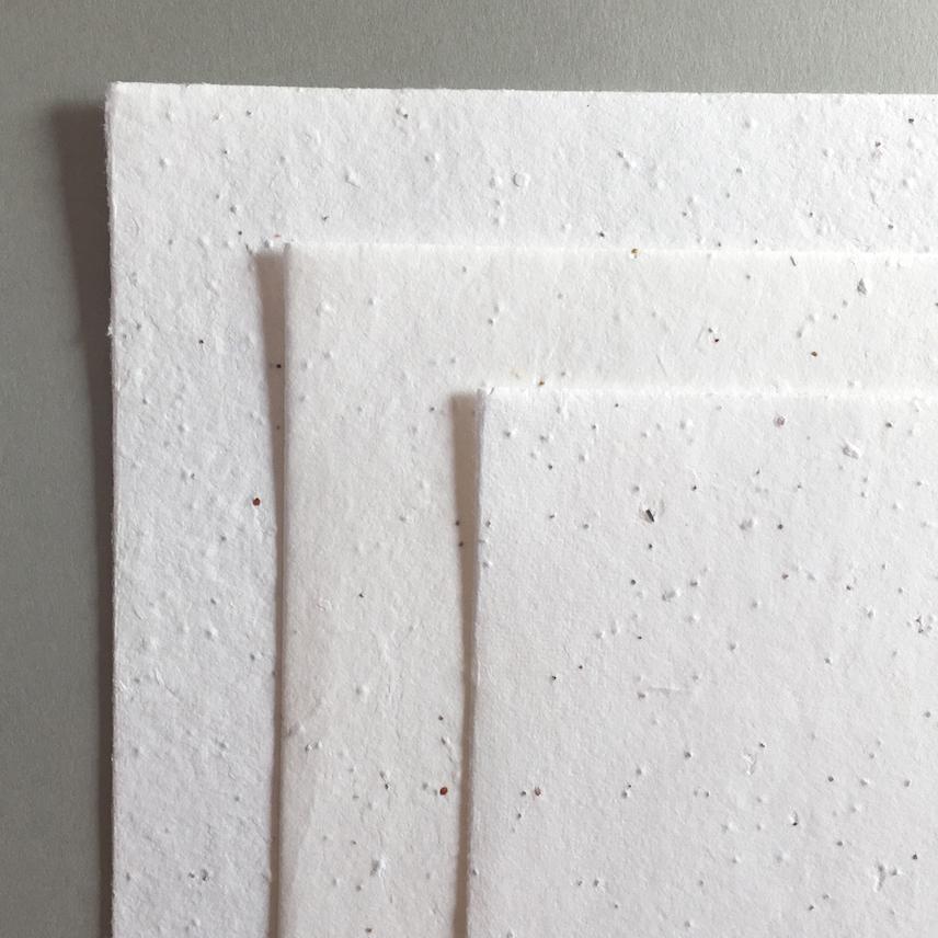 ホワイト うす厚 10枚セット画像