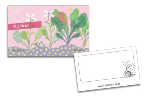 ルッコラ GS-5017 315円(税込)